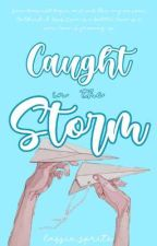 Caught In The Storm by lassie_sprite
