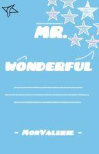 Mr. Wonderful by Vabi_mas