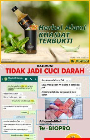 Call Wa 085 655 790 709 Agen M Biopro Malang Wattpad