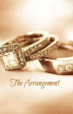 The Arrangement*[unedited prototype]* by ninjaassassin16