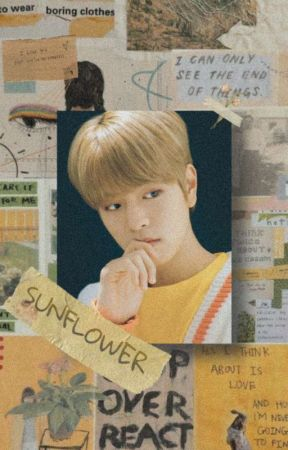 sunflower | chanmin by aiurrs