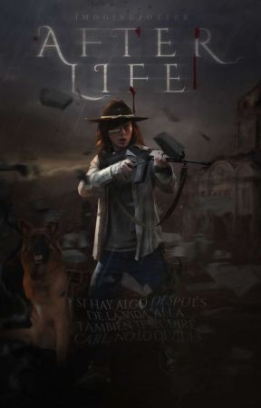 𝗔𝗙𝗧𝗘𝗥 𝗟𝗜𝗙𝗘 ━━━CARL GRIMES by ImoginePotter
