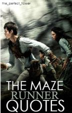 THE MAZE RUNNER QUOTES by the_perfect_flower
