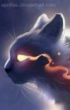 your story (warrior cats) by Lily_Warrior_cats