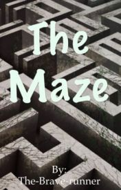 The Maze by The-Brave-runner