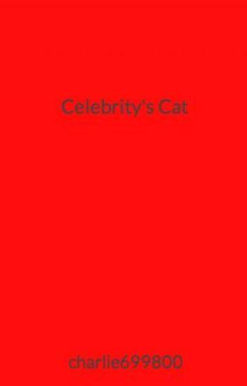 Celebrity's Cat