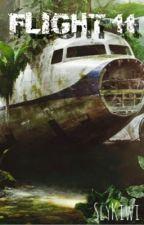 Flight 11 by SlyKiwi
