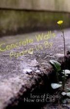 Concrete Walls by NeverShoutAlex