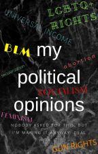 My Political Opinions by KingKawaiiKiwi