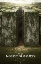 Silent (Maze Runner fanfic) by al33sha