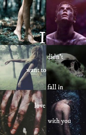 I Didn't Want to Fall in Love With You (A Dylan Schmid