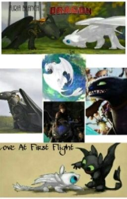Hiccup and Toothless: Mystery of the Fury - Tamuna