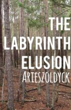 The Labyrinth Elusion by AriesZoldyck