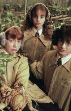 gen z at hogwarts: a true novel by amegan49