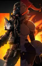 The Breaker and The Slayer (Fem! Goblin Slayer X Firebreak) by Unthinkable175