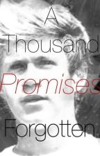 A Thousand Promises Forgotten (Niall Horan) by mialeecira