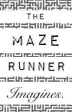 The Maze Runner Imagines by we_call_theme_shanks