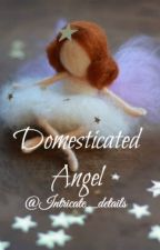 Domesticated Angel by Intricate_details