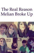 Smosh Fanfiction- The Real Reason Why Melian Broke Up by ianhecoxbae