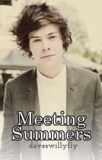 Meeting Summers [Harry Styles Fanfic] CLOSED by 2omato