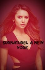 Surnaturel à New York : tome 1 by ScherinaLlorens