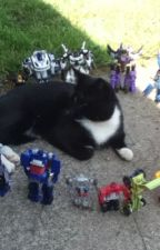 The Transformers are real!!! by jeticy