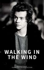 Esquecer você ;;Harry Styles ✔ by hrsmilas