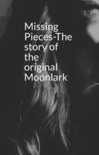 Missing Pieces-The story of the Original Moonlark by AnnabethPriorFoster