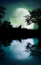 By Moonlight - KieranJudge's Horror Stories by KieranJudge