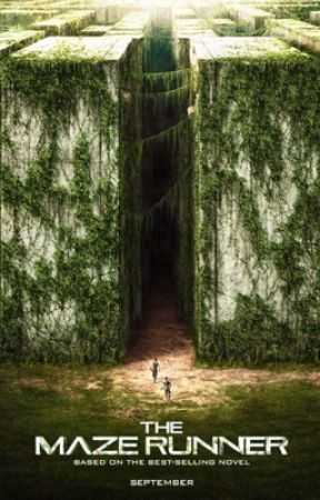 The Maze Runner Preferences and Imagines by daredevilminho