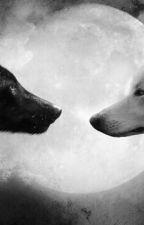 World Wolf by LoverDarck