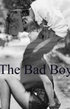 The bad boy (a Hayes Grier fanfic) by ptvfan57