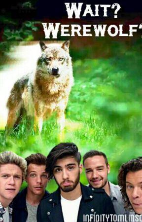 Wait? Werewolf? [1D & 5SOS fanfic] by 1dheathens