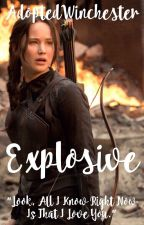Explosive • Daryl Dixon [1] by AdoptedWinchester