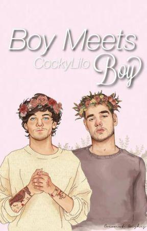 Boy Meets Boy⚣Lilo MPreg✔️ by CockyLilo