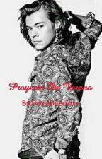 Proyecto De Verano (Harry Styles) by PaulaDirection