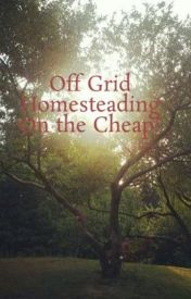 Off Grid Homesteading On the Cheap! by CarabethMitchell