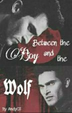 ~ Between the boy and the wolf ~ (Derek Hale) by AndyCS