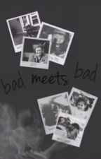 Bad Meets Bad | h.s by tipsystyles