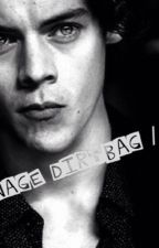 Teenage Dirtbag // H.S by story-writerxo