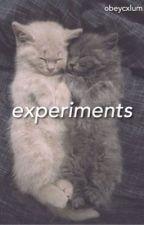 Experiments ›› Cake (Italian Translation) by badpaq