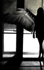 Asas Pra Voar (Reescrevendo) by Bellas2