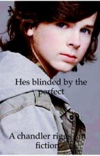 He's blinded by the perfect  -chandler Riggs by brianna585
