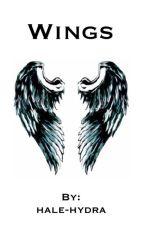 Wings by hale-hydra