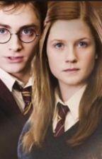Harry & Ginny: una piccola grande storia d'amore by ValerioPontini