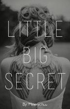 Little Big Secret [PAUSADA] by meerychuu