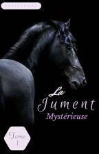 La jument mystérieuse (Tome 1) [Réécriture] by chacha2007