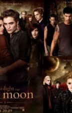 Twilight New Moon Novel by Gustifitriedianpuspa