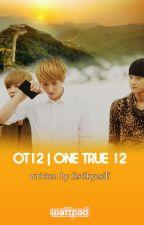 OT12 / One True 12 by fistikyesili