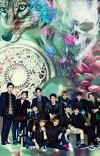 12 Wolves & Their Stunners [EXOxOC Fantasy] by Helen_Fighter_Hnin